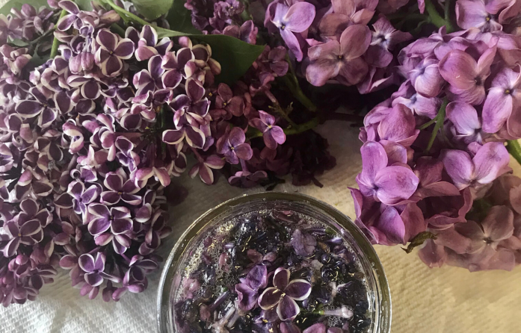 Lilacs and honey